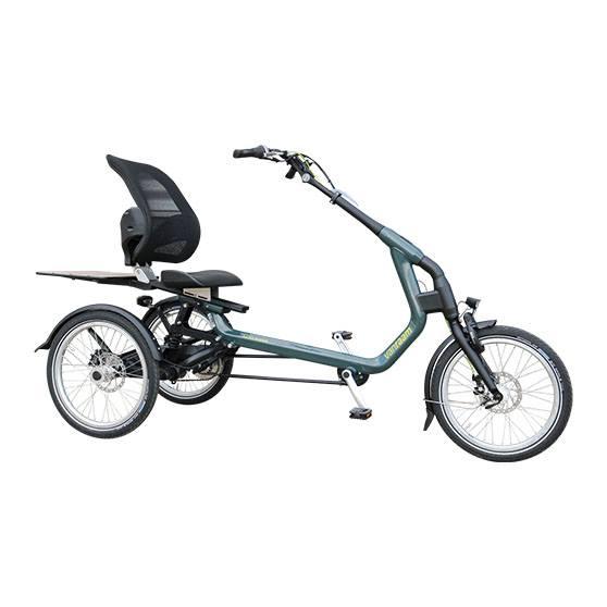 Van Raam Easy Rider driewieler elektrische fiets